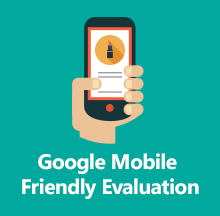 Google Mobile Friendly Evaluation